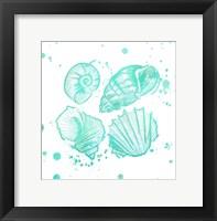 Splat Shells II Framed Print