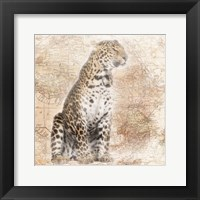 Framed African Animals - Leopard