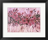 Framed Poppies in Pink