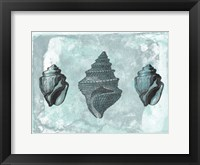 Ocean Beauty 2 Framed Print