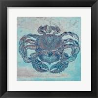 Framed Saltwater Crab