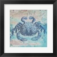 Sea Crab Framed Print