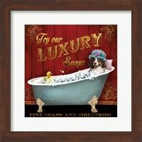Framed Luxury Soaps