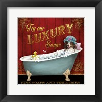 Framed Luxury Soaps
