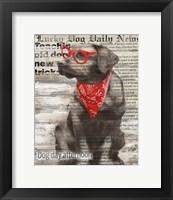 Lucky Dog Framed Print