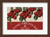 Framed Cherries III