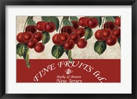 Framed Cherries III