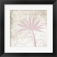 Cream Rose III Framed Print