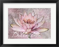 Framed Lotus Bellaflora