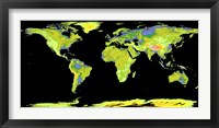 Framed Digital Elevation Model of the Continents on Earth