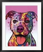 Framed Cherish The Pitbull