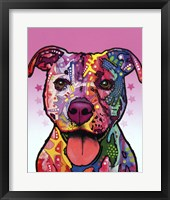 Framed Cherish The Pitbull
