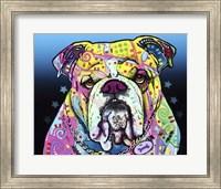 Framed Bulldog