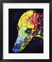 Framed Greyhound