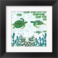 Framed Turtles