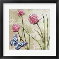 Herbs 1 Framed Print
