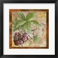 Wine 12 Framed Print