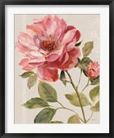 Framed Harmonious Rose Linen