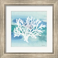 Framed Sea Life Coral II