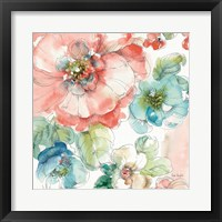 Summer Bloom II Framed Print