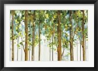 Framed Forest Study I Crop