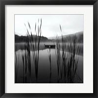 Framed Through the Reeds at Dawn Crop