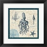 Ocean Life VII Framed Print