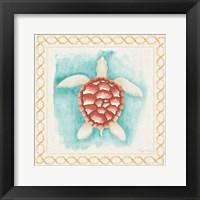 Framed Coastal Mist Sea Turtle Border Turquoise