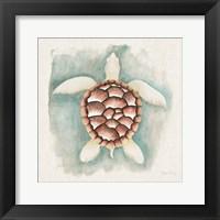 Framed Coastal Mist Sea Turtle