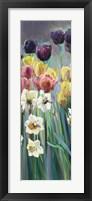 Grape Tulips Panel I Framed Print