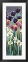 Grape Tulips Panel II Framed Print