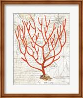 Framed Textured Coral I