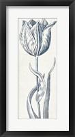Eden IV  Indigo and White Framed Print