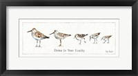 Framed Pebbles and Sandpipers IX