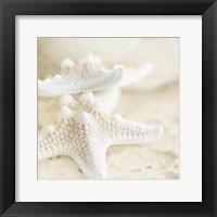 Framed Seashore Stars