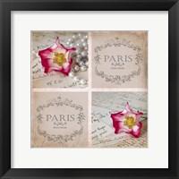 Rose Romance I Framed Print