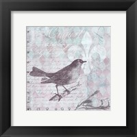 Framed Vintage Bird 33