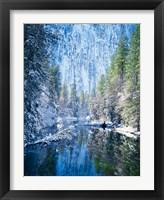 Framed Winter trees along Merced River, Yosemite Valley, Yosemite National Park, California