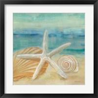 Framed Horizon Shells I