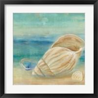 Framed Horizon Shells II