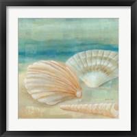 Framed Horizon Shells IV