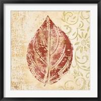 Framed Leaf Scroll II