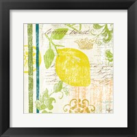 Fruit Crush I Framed Print