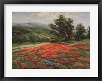 Framed Meadow of Wildflower