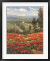 Framed Poppy Vista II