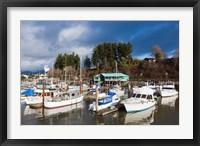 Framed Port Alberni, Harbor Quay Marina, Vancouver Island, British Columbia, Canada