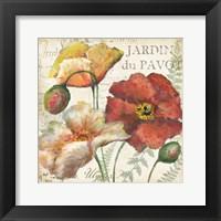 Framed Spice Poppies Histoire Naturelle II