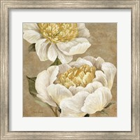 Framed Up Close Cream Peony