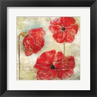 Framed Poppy Passion II