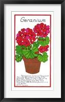 Framed Geranium